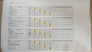 オフィシャル リーグ表2